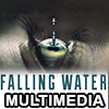 Falling Water Multimedia