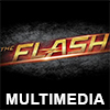 The Flash Multimedia